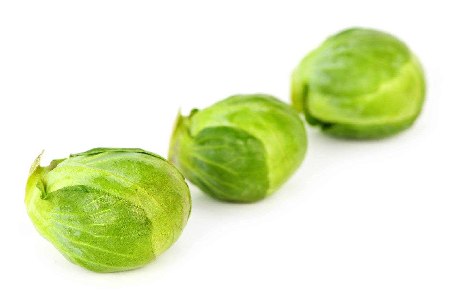 brussels sprouts, brussels, green, sprouts, three, vegetable - D851062