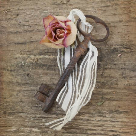 auf, Schlüssel, Geschenk, Schleife, Garten, nach oben - B12431841