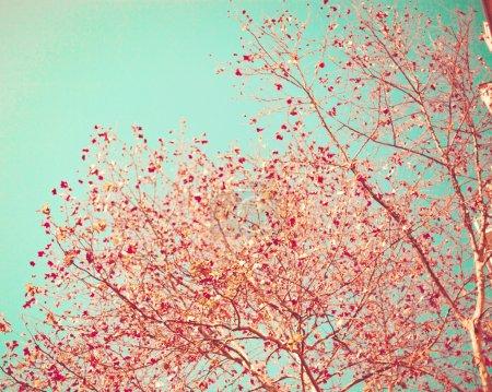 farbe blau hintergrund fotografie papier himmel