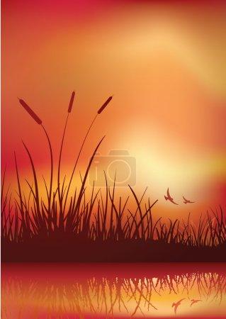 Farbe, Vektor, Hintergrund, Objekt, Grafik, Element - B22813906