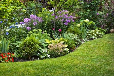 freizeit gruen farbenfroh schoen sommer gras