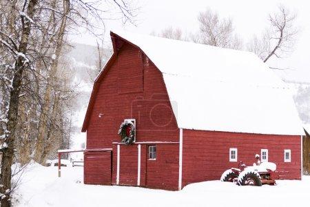 rot weiss design weihnachten urlaub natur