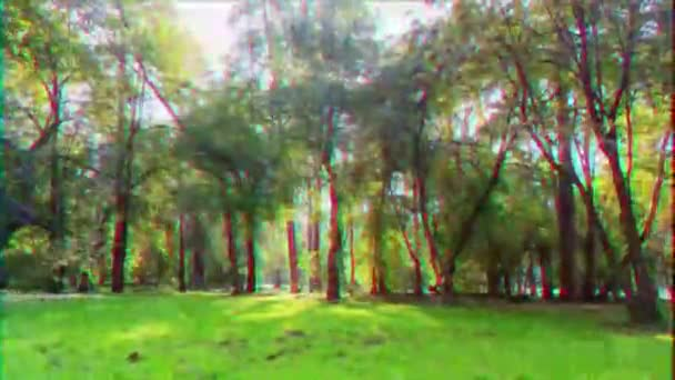 Video B250693010