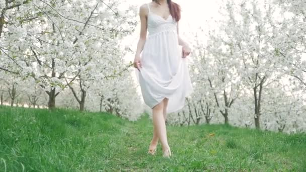 Video B196386032