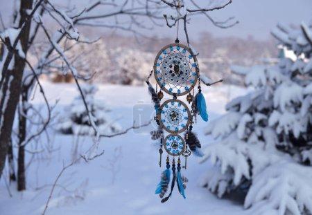 blau hintergrund kreis dekoration natuerlich baum