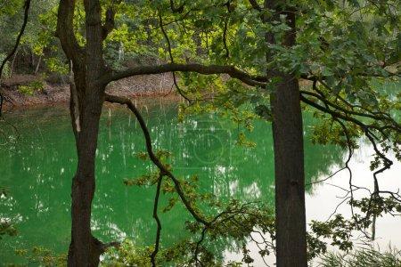 Aussicht, Reflexion, Park, Szene, Natur, Anlage - B417101170