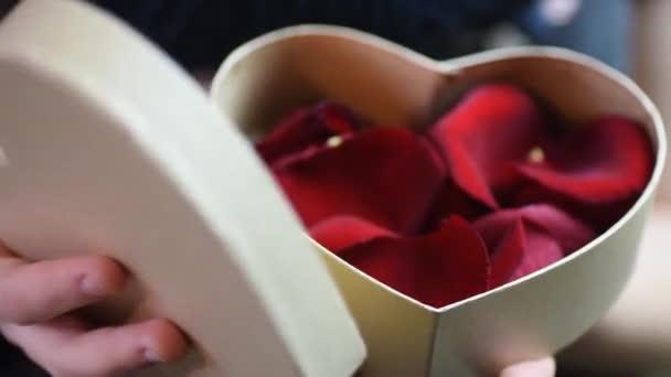 rot geschenk schoen tag valentin person