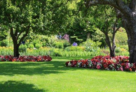 gruen kopie schoene sommer gras park