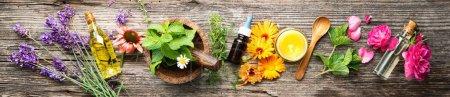 Hintergrund, Gesundheit, Natur, Garten, Kräuter, Flüssigkeit - B484577376