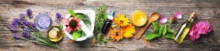Hintergrund, Gesundheit, Natur, Garten, Kräuter, Flüssigkeit - B484577112