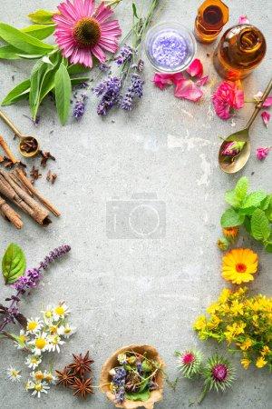 Hintergrund, Stein, Gesundheit, Natur, Garten, Kräuter - B484579100